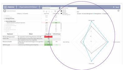radar charts drilldown.jpg