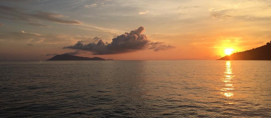 AMA Brasil e Cooperaqua realizam Expedição Marítima de Registro Audiovisual para Projetos de Algas