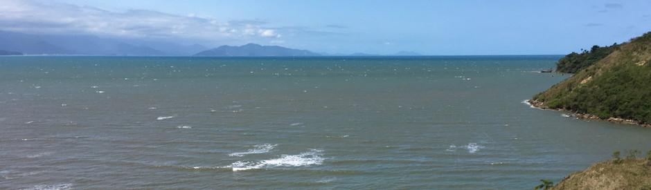 AMA Brasil coloca em prática o projeto ALGAMAR de algas marinhas no Litoral do Sudeste