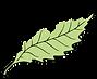 Logo web 1000px.png