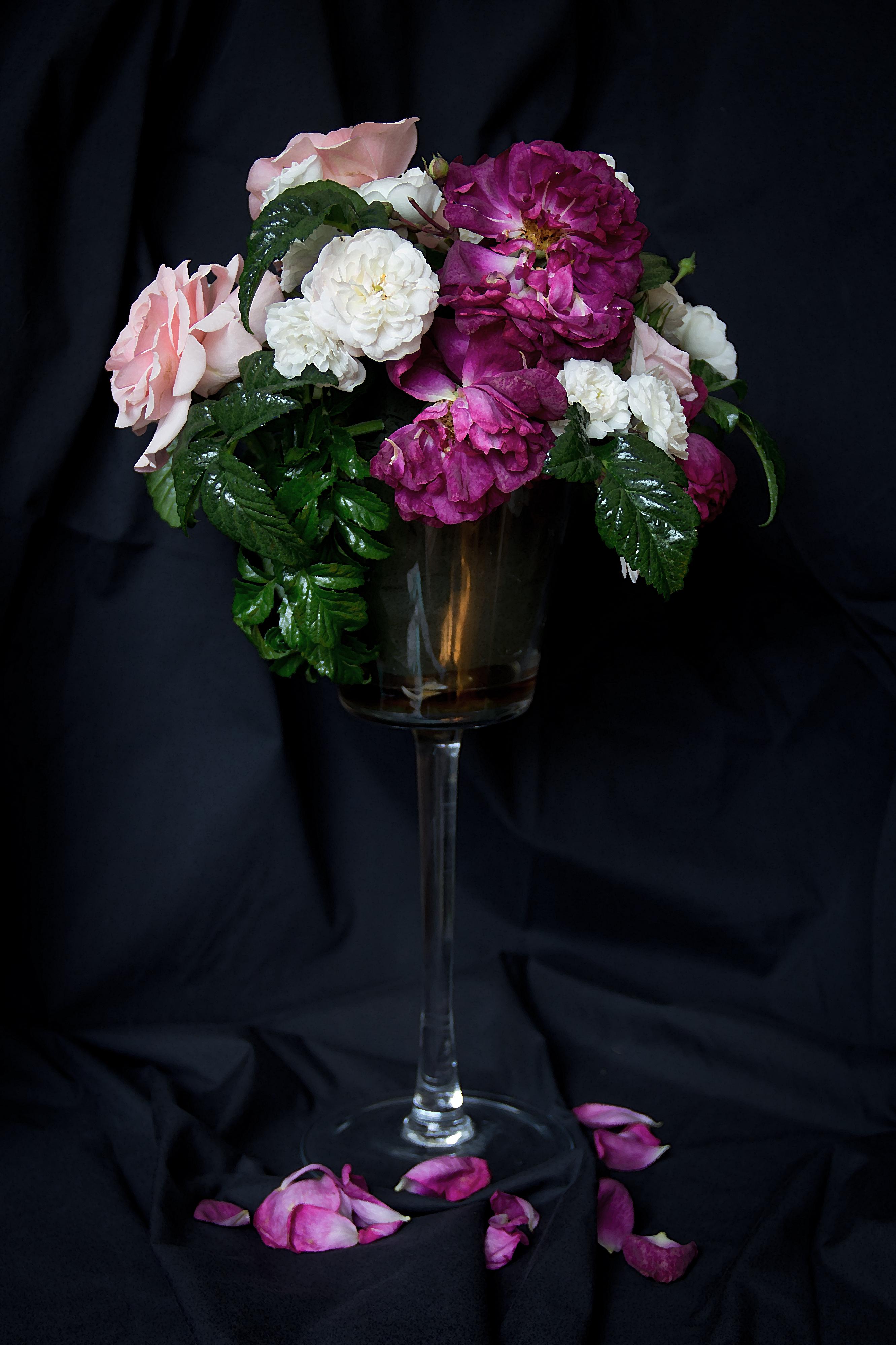 Roadside Roses, Long Stem Glass