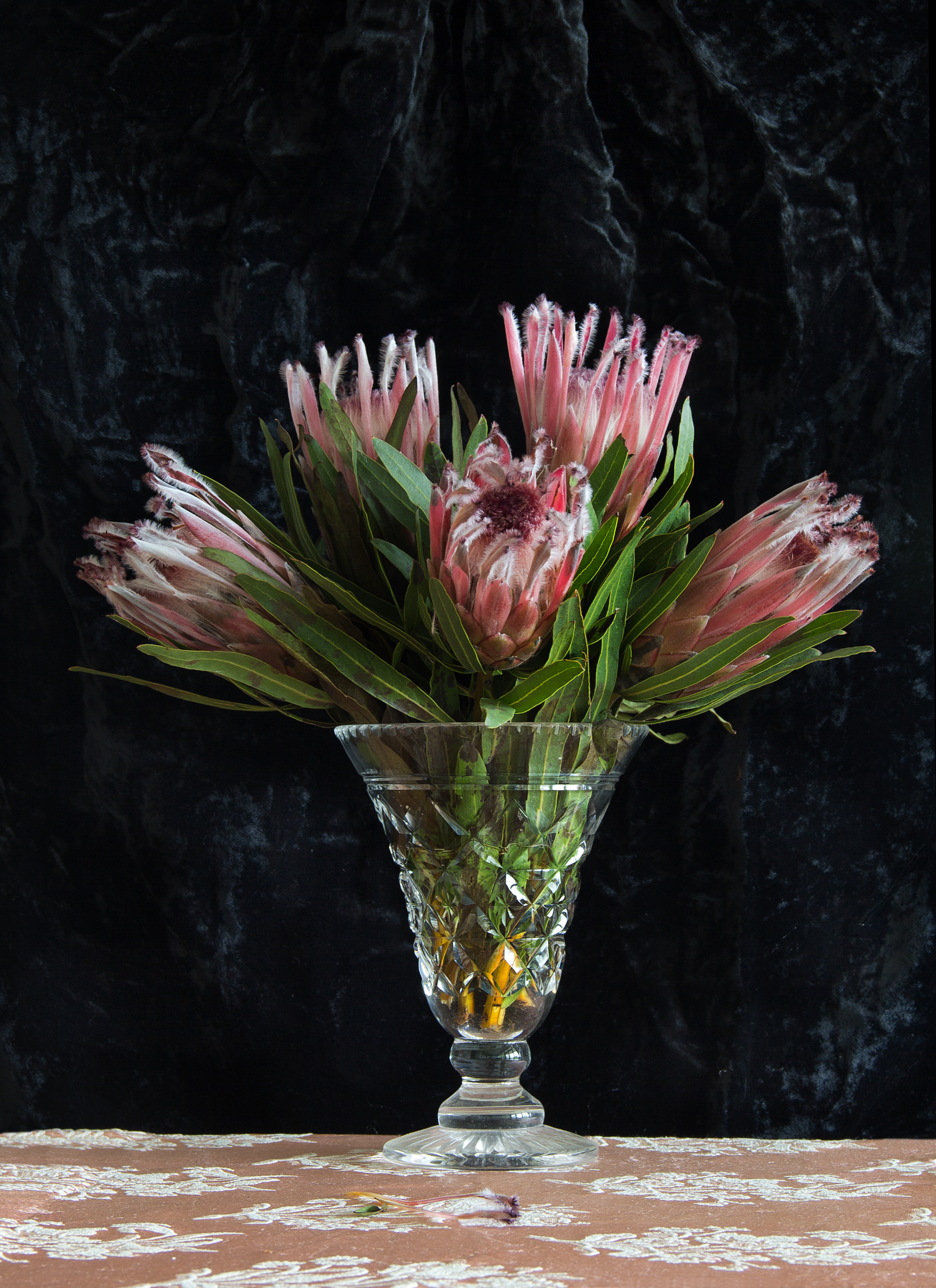 Protea in Lead Crystal