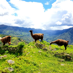 Explore North Peru from Chachapoyas