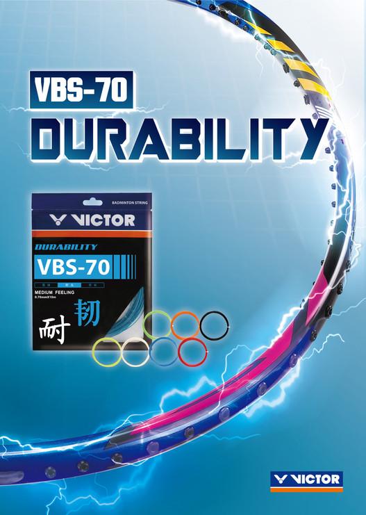 VBS-70_CS5-01.jpg