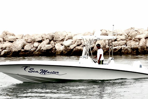 28 ft SPORT FISHING BOAT