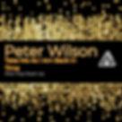 Peter wilson free track.jpg