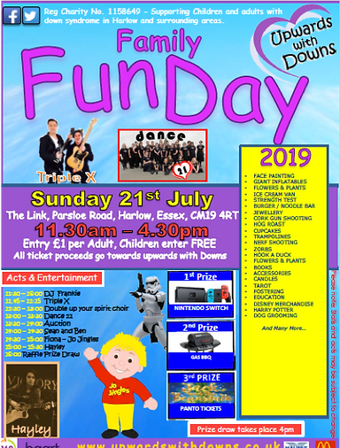 fun day poster image.png