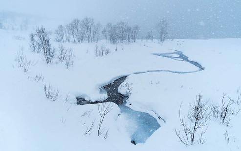 Snow landscape Senja copy.jpg