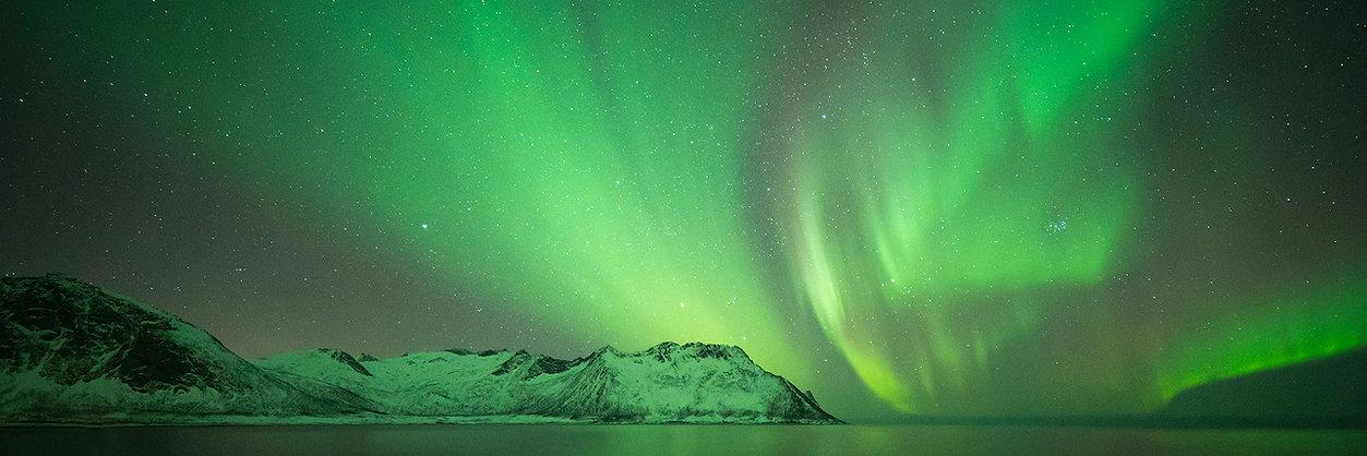 Northern light Senja Hamn.jpg