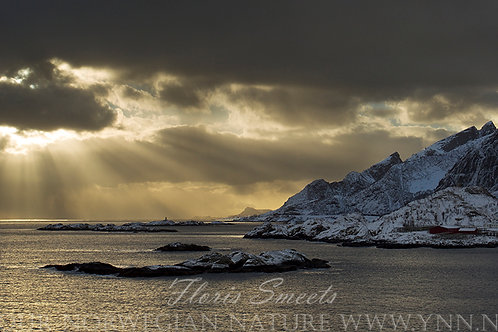 Sunrays at Reine
