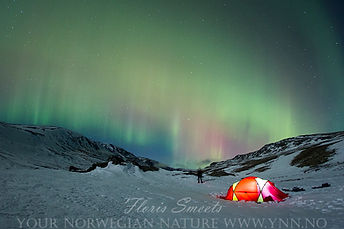 Northernlight over our base camp