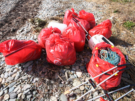 Plogging for Keep Wales Tidy