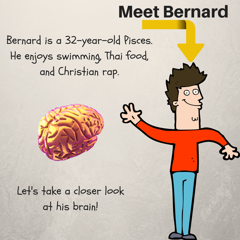 Bernard's Body Series, Brain!