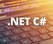 .NET C# DEVELOPER