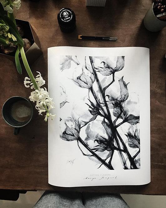cotton | kunstplakat