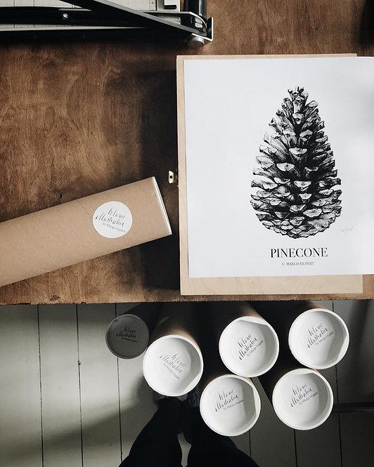 pinecone | kunstplakat