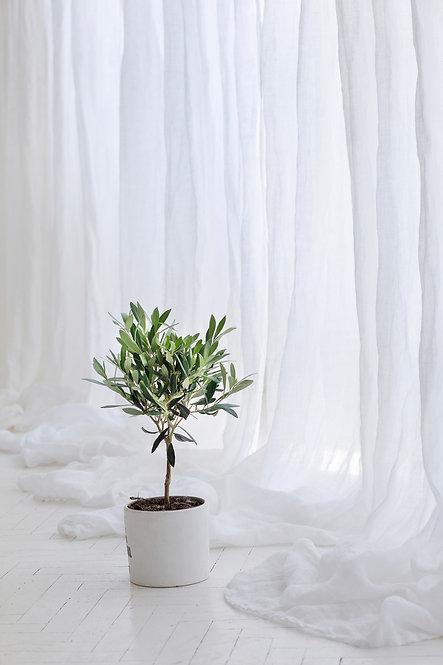 perfekte hvite gardiner av lin
