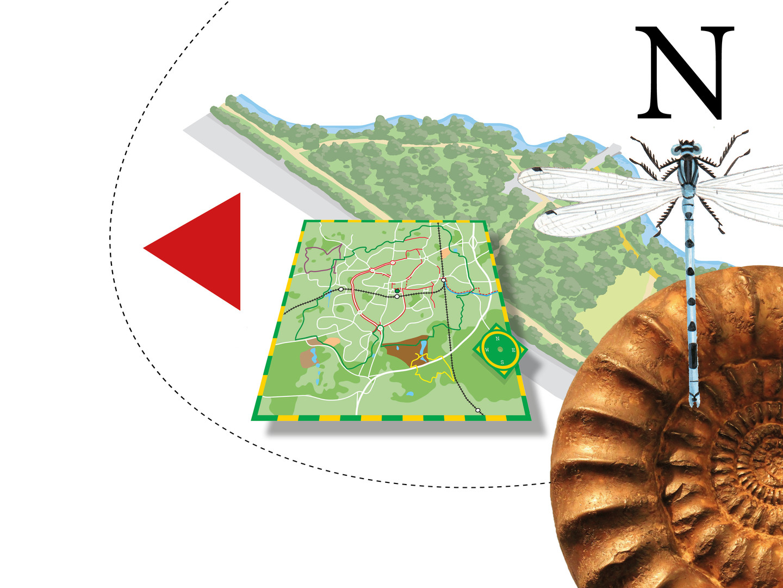MAPS & INTERPRETATION