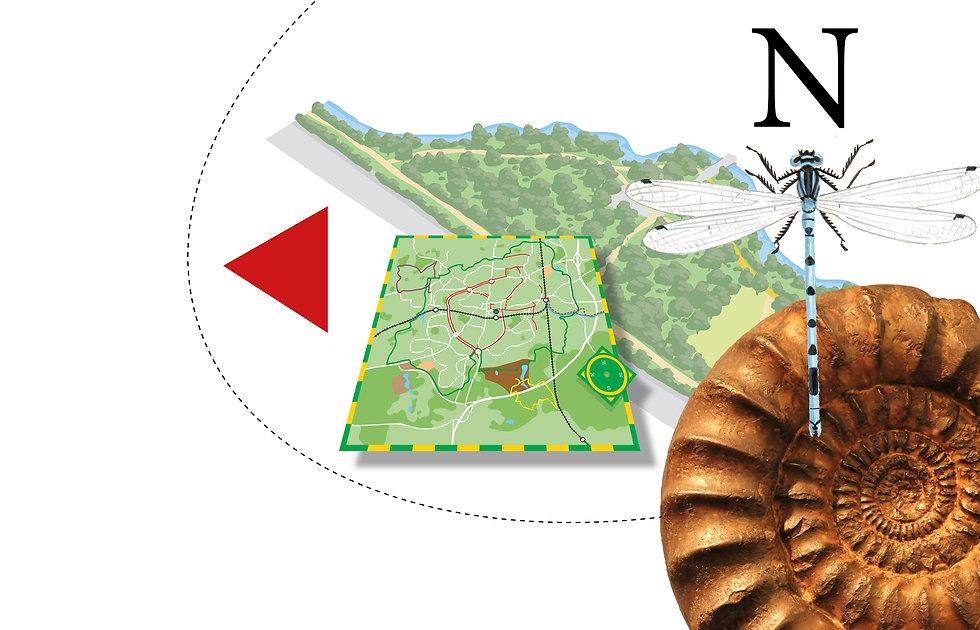 MAPSheaderaw.jpg