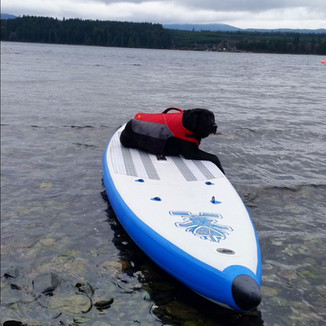 Kharma waiting to Paddle in British Columbia