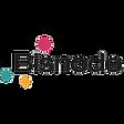 Bisnode_logo no BG.png