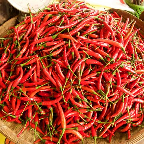 Thai Chilli Red