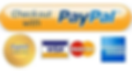 paypal_icon.webp