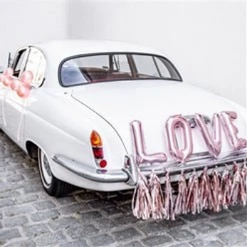 Just Married Wedding Car Decoration Kit