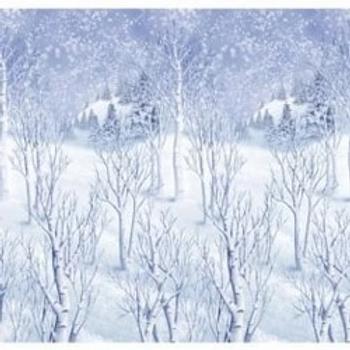 Winter Wonderland Room Scene Setter
