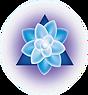 nneh logo.png
