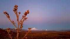 Mt Ararat & Full Moon Rising