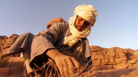 Mohammad, Algeria