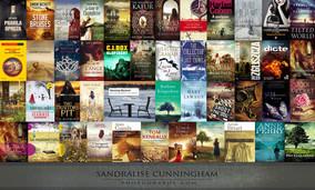BOOK COVERS 2013.jpg