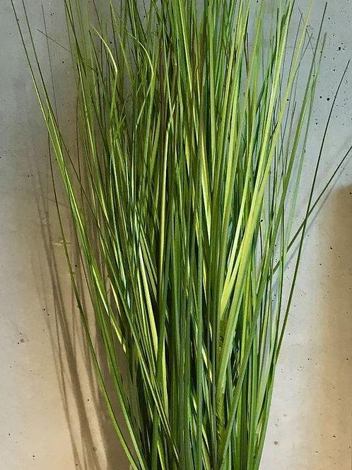 Kunstpflanze/Gras Typ King Festuca/klein