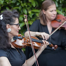 Blue Mountains String Quartet