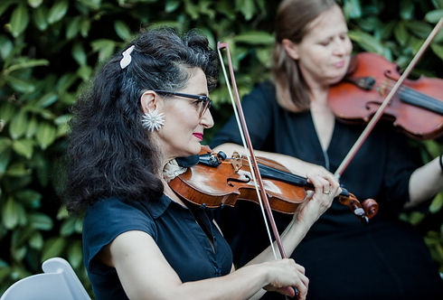 Violin (1 of 1).jpg