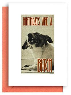 Birthday Card - Item #355