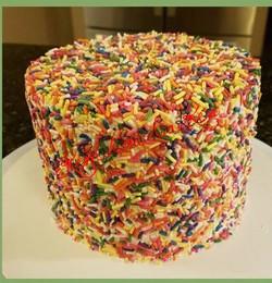 Confetti Cake_edited_edited_edited