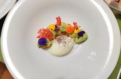 Uovo fondente - Purè di ceci - Spugna al basilico - Corallo alla paprika