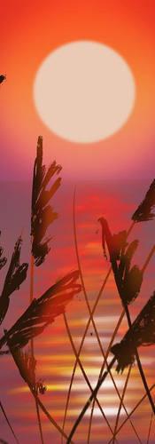 Ocean Reeds Tutorial