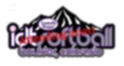 idt logo 2013_logo_1_edited.jpg