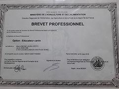 Diplome d'état d'éducateur canin, cfppa Bouganville
