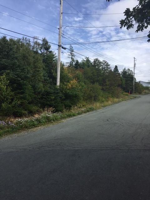 64 Blackstrap Path