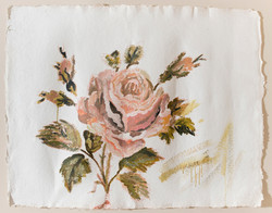 Rose Rose 2015