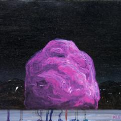 Study (Purple Rock)