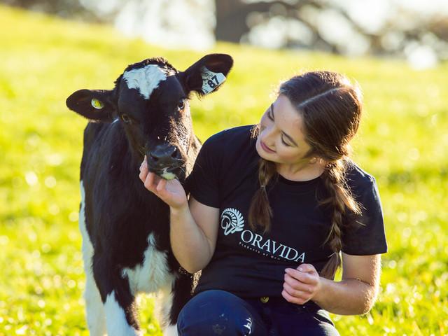 Oravida Dairy