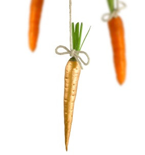 The Carrots of Empty Nothing