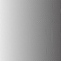 Hexagon Roll