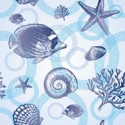 Fish and Shell