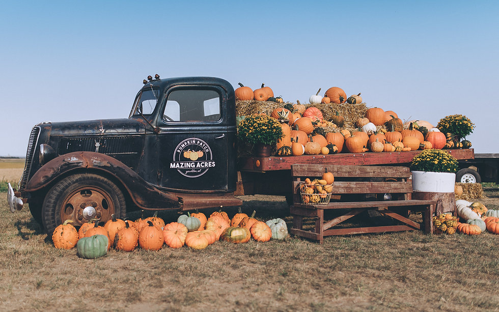antique-blue-truck-pumpkin-mums-mazing-acres-pumpkin-patch
